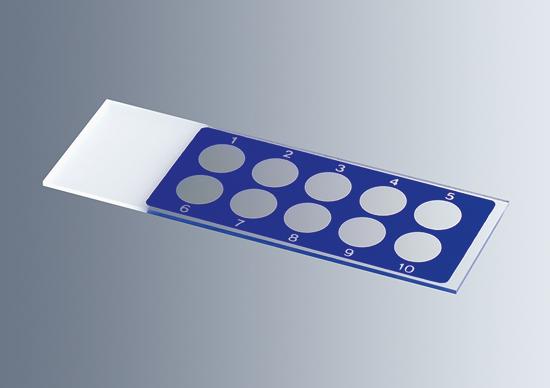 Mm Glass Slide