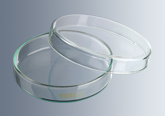 Petri dishes, glass